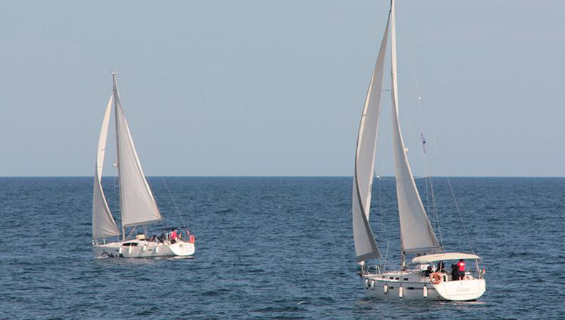 sailing regatta 3